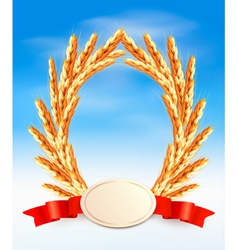 Ripe yellow wheat ears with red ribbons vector image vector image