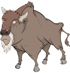 Bison buffalo vector