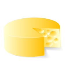 Cheese in white vector