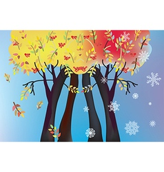 Autumn and winter trees card vector image vector image