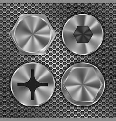 Screw heads on metal perforated background vector