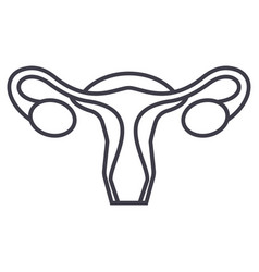 uterusfemale gynecology line icon sign vector image