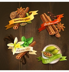 Spices badges set vector