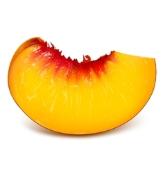 Slice of ripe peach vector image