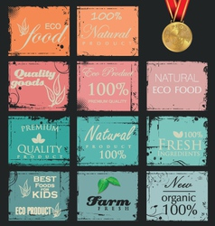 Collection of eco and bio labels retro design vector