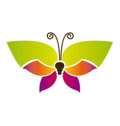 Color butterfly with tricolor wings icon vector