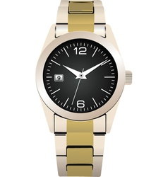 expensive watch vector image vector image