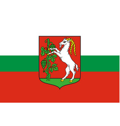 flag of lublin city in southeastern poland vector image