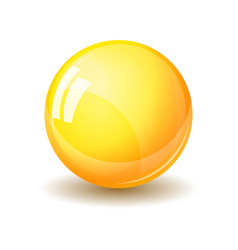 glass sphere realistic vector image