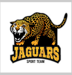jaguar mascot - emblem for sport team vector image
