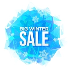 Big winter sale sign on blue ice and snowflakes vector