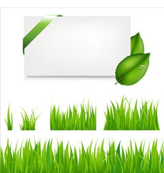 Green grass collection vector