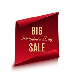 Big Valentines day sale poster template vector image vector image