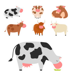 bulls cows farm animal character vector image