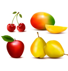 Group of fresh colorful fruit vector image vector image
