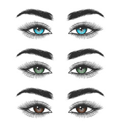 Look of colorful female eyes vector