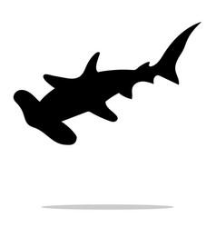 Shark hammerhead predator nautical black vector