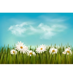 Grass with daisies under blue sky retro background vector