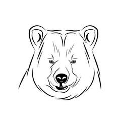 Head bear animal free spirit symbol vector