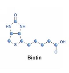 Biotin is a vitamin b7 vector