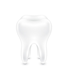 Clean healthy tooth vector