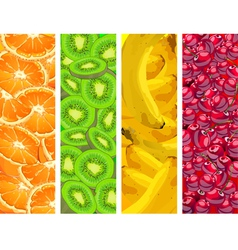 fruit background four elements vector image vector image