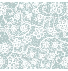 Lace seamless pattern with flowers vector image