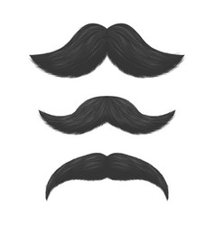 realistic detailed 3d black fake mustaches vector image vector image