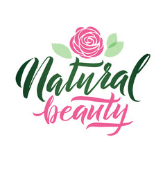 Logo natural beauty lettering custom vector