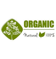 A natural organic label vector