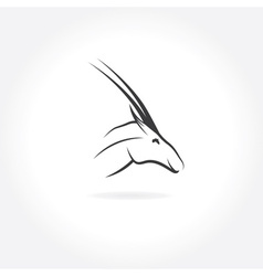 Antelope head with eye in form of africa vector