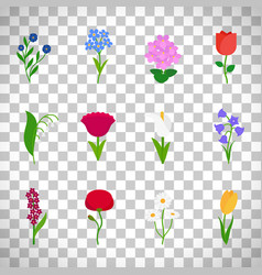 spring flowers icons on transparent background vector image vector image