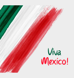viva mexico background with waterccolored grunge vector image