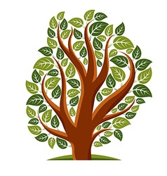 Art of tree with green leaves spring season vector image
