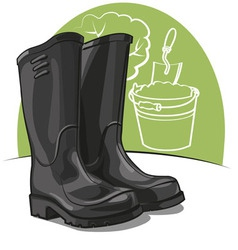 rubber boots vector image vector image
