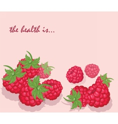 Fresh Healthy Red Raspberry background vector image vector image