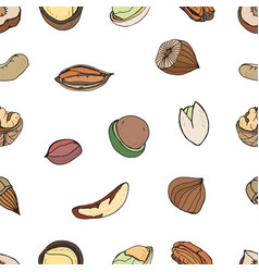 Nut seamless on white background hand drawn vector