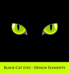 black cat eyes vector image