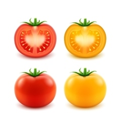 Set of red yellow green fresh cut whole tomatoes vector