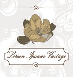 Vintage flower of apple vector