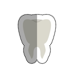 Isolated tooth design vector