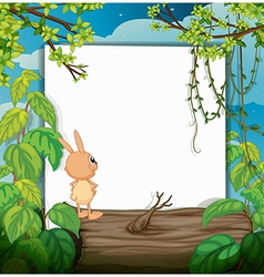 Rabbit and a white board vector image vector image