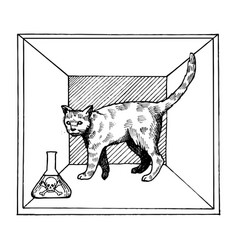 Shroedinger cat in box poison engraving vector