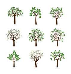 collection of spring trees vector image