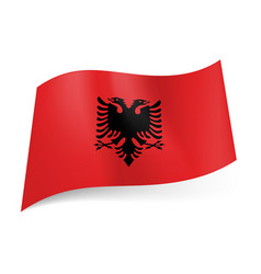 national flag of albania black double-headed vector image