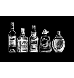 Bottles of alcohol distilled beverage vector