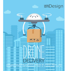 Concept of the delivery by the drone vector