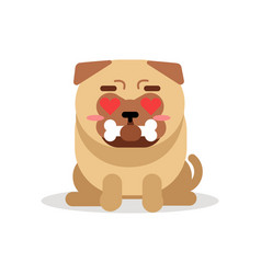 Funny pug dog character sitting and holding bone vector