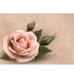 Retro background with beautiful pink rose with vector image vector image