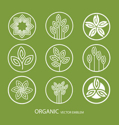 Set abstract organic emblem outline vector